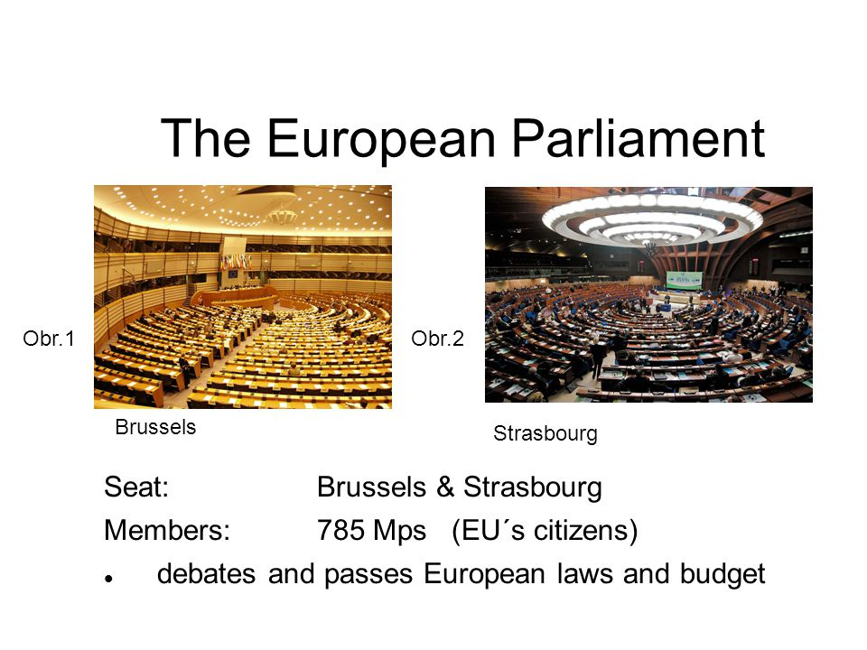 The European Council Seat: Brussel Members:Heads of State or Government of the Member States and the President of the Commission sets the EU s general political direction and priorities The European Council Logo Obr.3