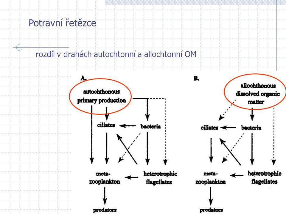 Potravní řetězce rozdíl v drahách autochtonní a allochtonní OM