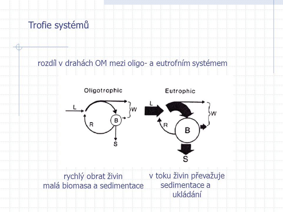 Trofie systémů rozdíl v drahách OM mezi oligo- a eutrofním systémem rychlý obrat živin malá biomasa a sedimentace v toku živin převažuje sedimentace a
