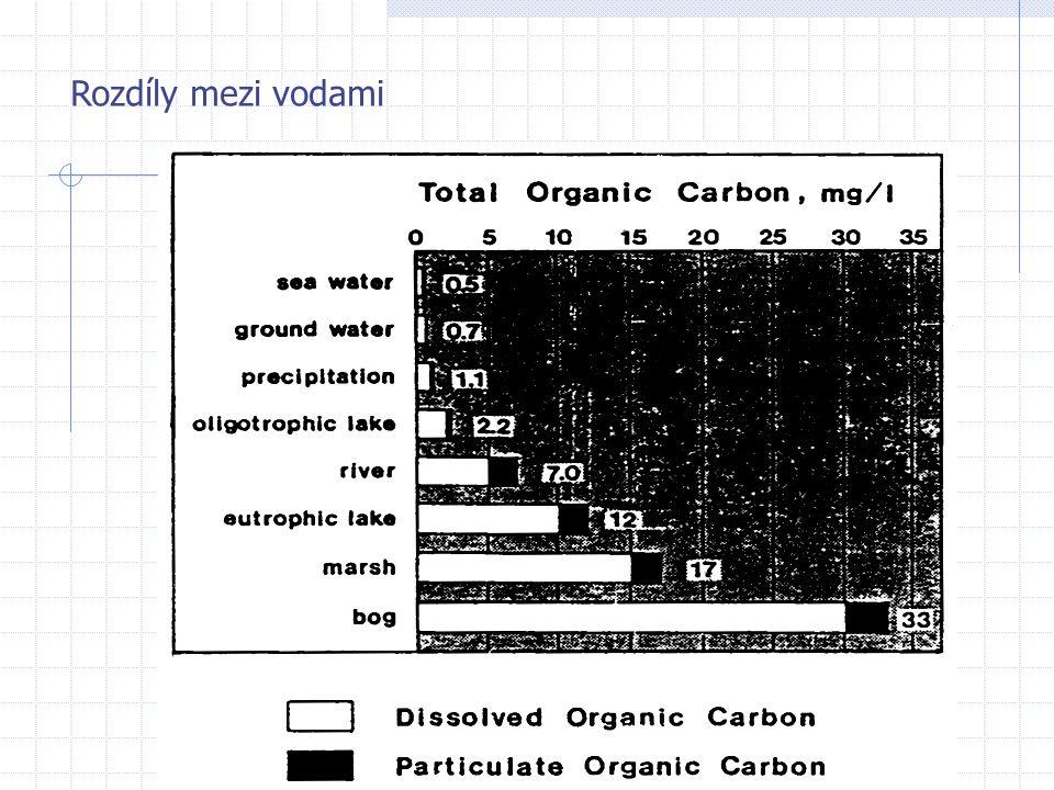 Trofie systémů rozdíl v drahách OM mezi oligo- a eutrofním systémem rychlý obrat živin malá biomasa a sedimentace v toku živin převažuje sedimentace a ukládání