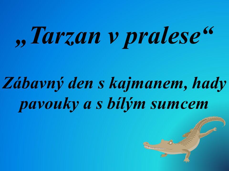 """""""Tarzan v pralese"""" Zábavný den s kajmanem, hady pavouky a s bílým sumcem"""