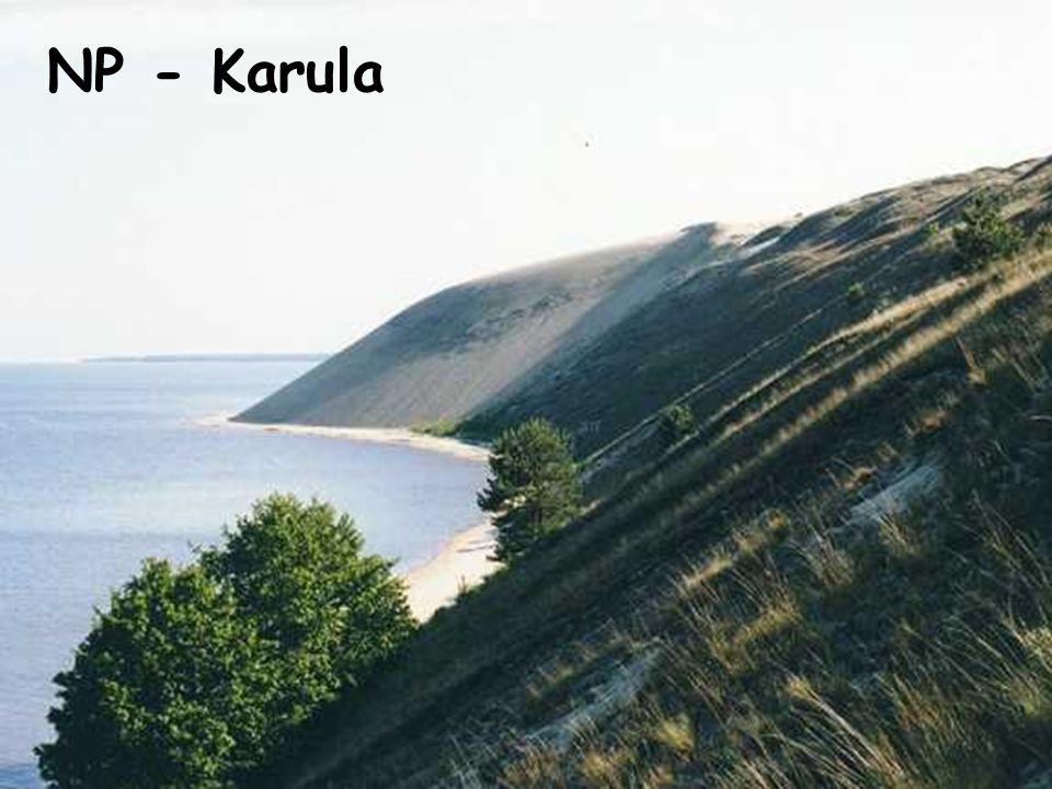 NP - Karula