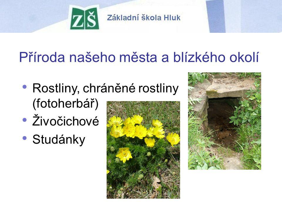 Příroda našeho města a blízkého okolí Rostliny, chráněné rostliny (fotoherbář) Živočichové Studánky