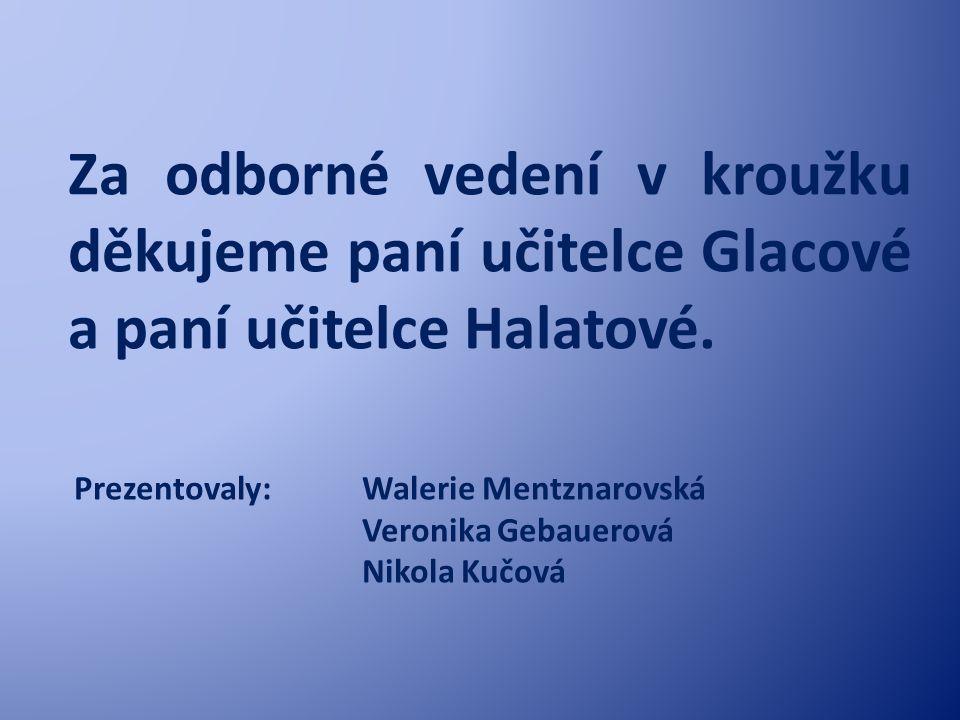 Za odborné vedení v kroužku děkujeme paní učitelce Glacové a paní učitelce Halatové.