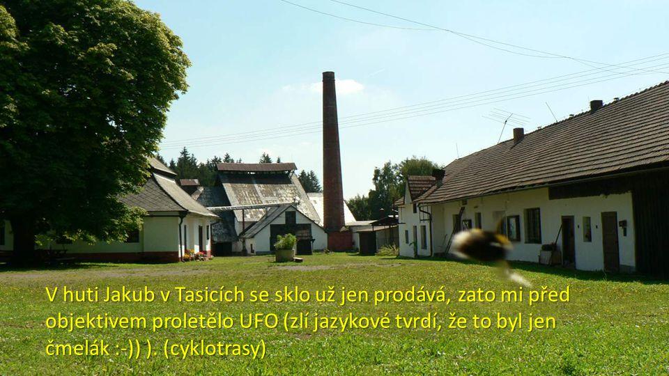 V huti Jakub v Tasicích se sklo už jen prodává, zato mi před objektivem proletělo UFO (zlí jazykové tvrdí, že to byl jen čmelák :-)) ).