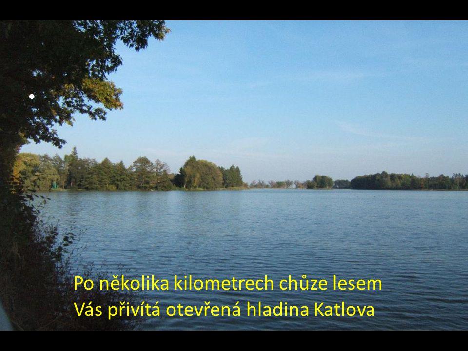 Po několika kilometrech chůze lesem Vás přivítá otevřená hladina Katlova