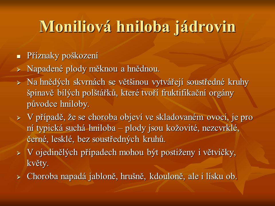 Moniliová hniloba jádrovin Příznaky poškození Příznaky poškození  Napadené plody měknou a hnědnou.
