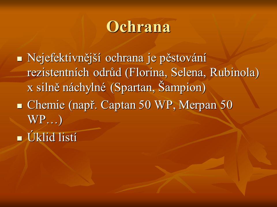 Ochrana Nejefektivnější ochrana je pěstování rezistentních odrůd (Florina, Selena, Rubinola) x silně náchylné (Spartan, Šampion) Nejefektivnější ochrana je pěstování rezistentních odrůd (Florina, Selena, Rubinola) x silně náchylné (Spartan, Šampion) Chemie (např.