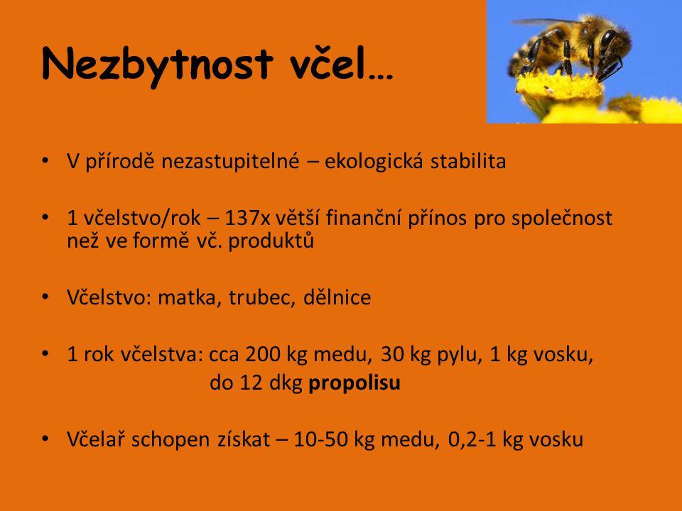 Medovina Recept vytvořený samotnou přírodou Tradiční medovina: - Voda, med, kvasinky - nápoj vyrobený alkoholovým kvašením včelího medu zředěného vodou Ovocné, kořeněné, bylinkové Název – ze spojení medové víno 1 z nejstarších alkoholických nápojů, znám již od starověku