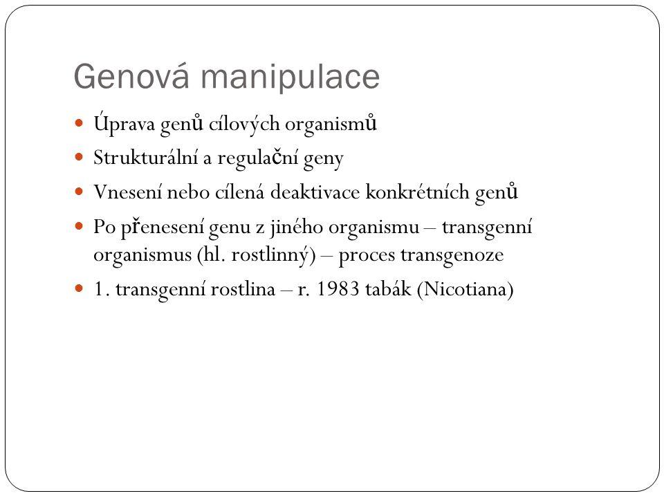 Genová manipulace Úprava gen ů cílových organism ů Strukturální a regula č ní geny Vnesení nebo cílená deaktivace konkrétních gen ů Po p ř enesení genu z jiného organismu – transgenní organismus (hl.