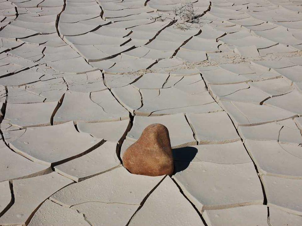 Racetrack Playa Suché solné jezero leží ve výšce 1130 m nad mořem na území Národního parku Death Valley.
