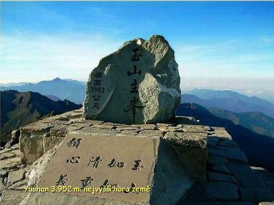 Saliny Tainan C C C ChingKunshen