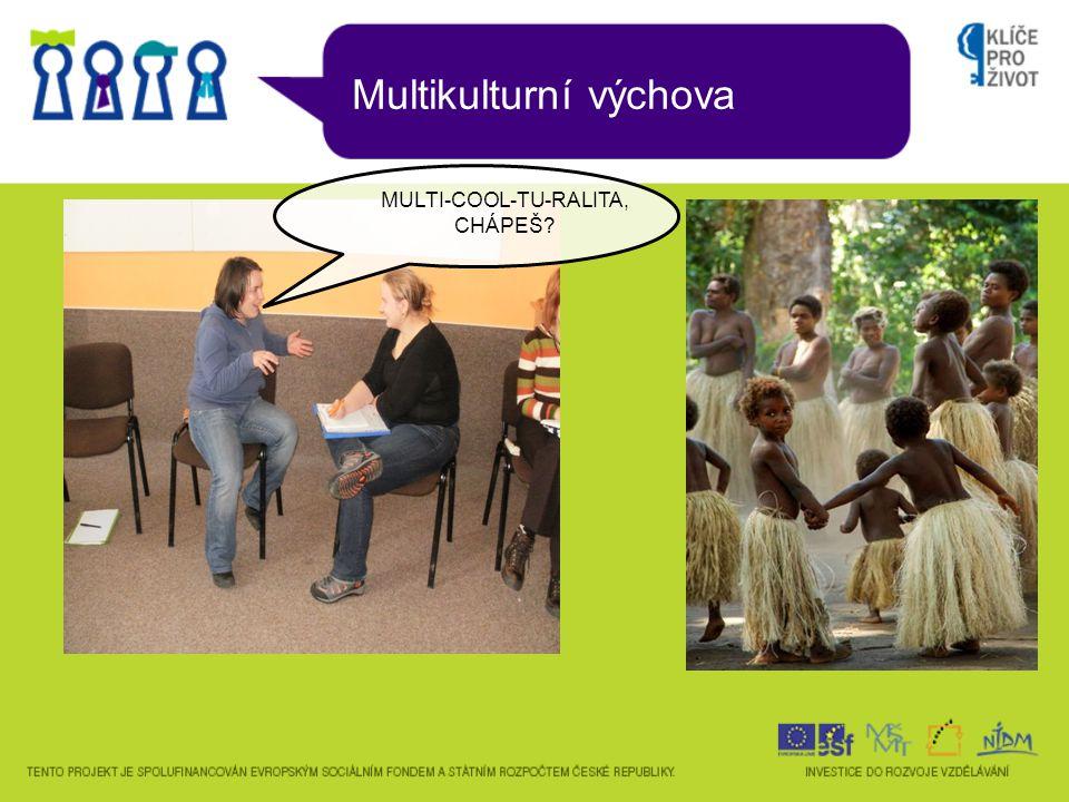 Multikulturní výchova MULTI-COOL-TU-RALITA, CHÁPEŠ?