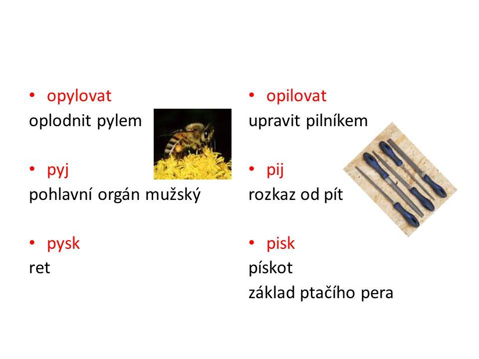 opylovat oplodnit pylem pyj pohlavní orgán mužský pysk ret opilovat upravit pilníkem pij rozkaz od pít pisk pískot základ ptačího pera