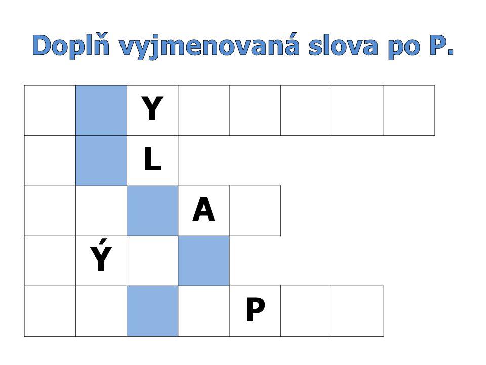 Y L A Ý P