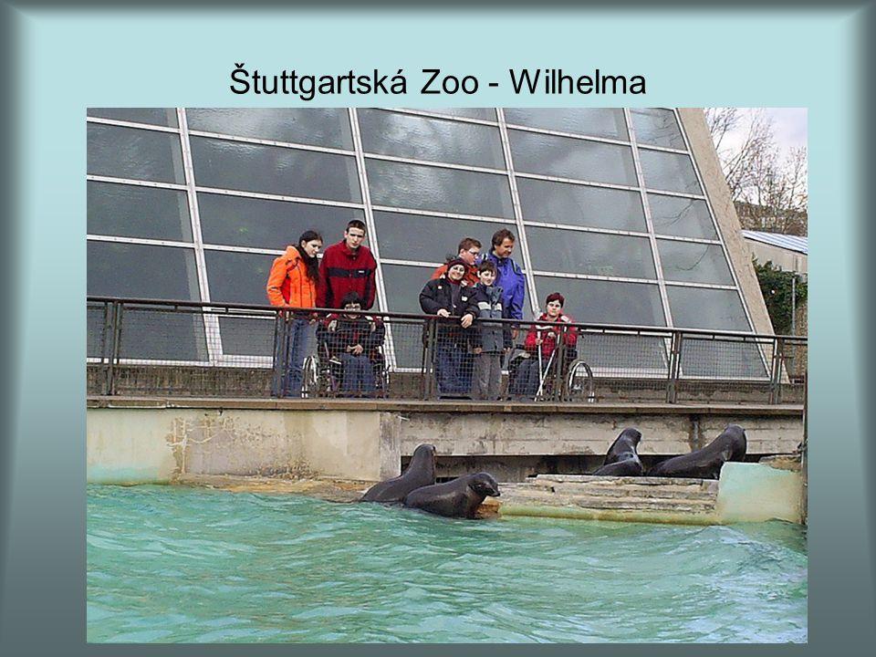 Štuttgartská Zoo - Wilhelma
