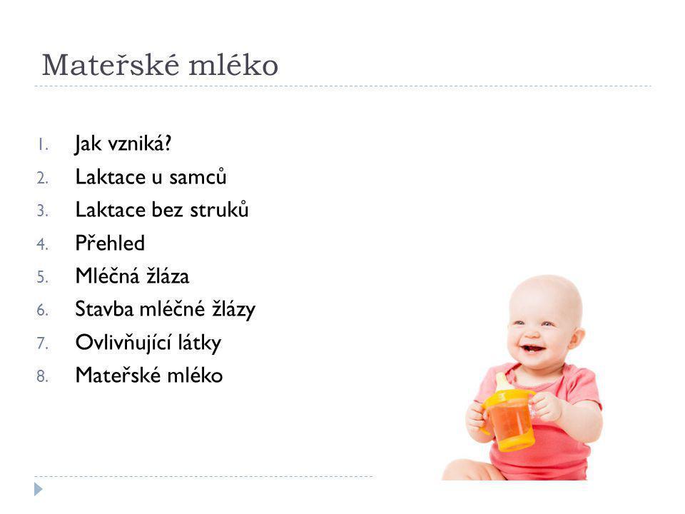 Mateřské mléko 1.Jak vzniká. 2. Laktace u samců 3.