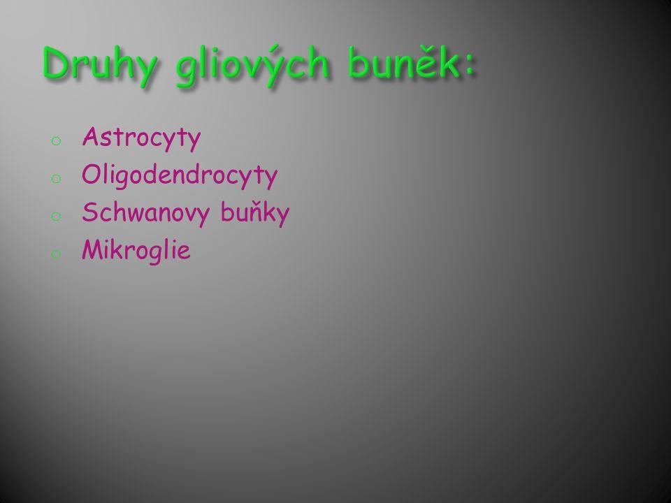 o Astrocyty o Oligodendrocyty o Schwanovy buňky o Mikroglie
