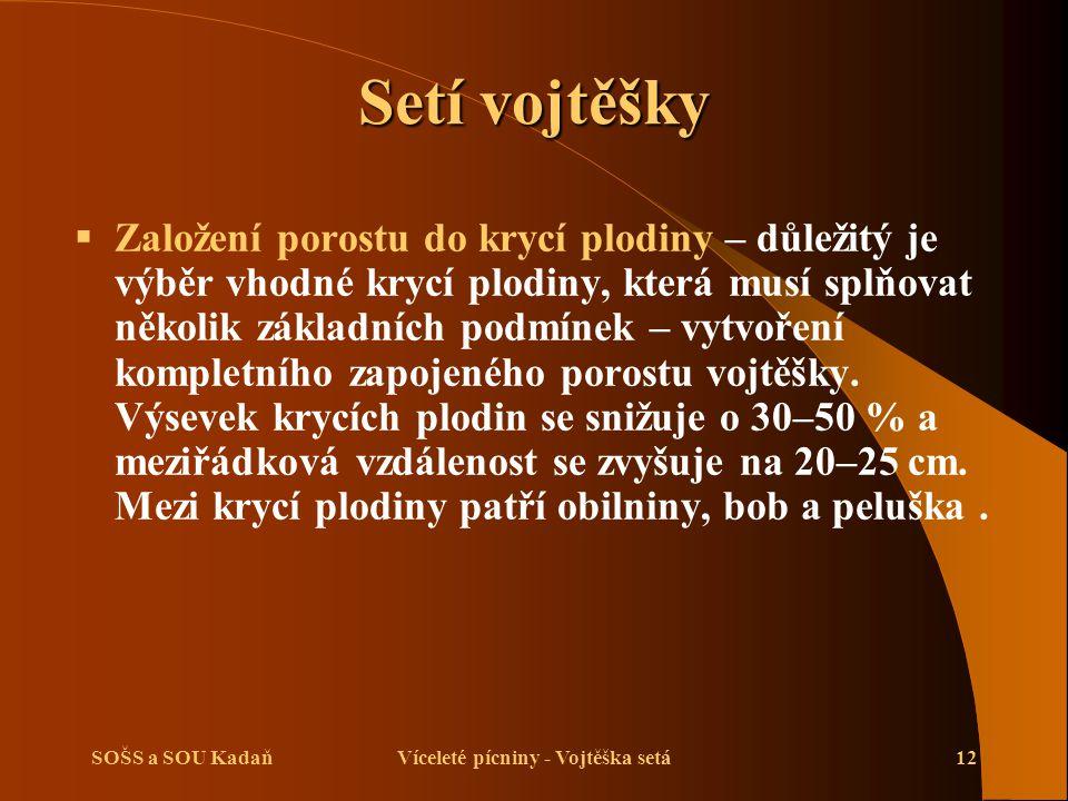SOŠS a SOU KadaňVíceleté pícniny - Vojtěška setá13 Setí vojtěšky  Vojtěška se běžně seje do řádků vzdálených 12,5 cm.