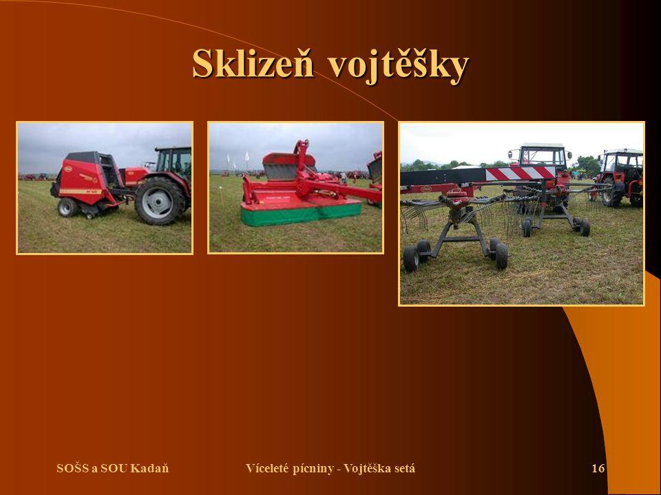 SOŠS a SOU KadaňVíceleté pícniny - Vojtěška setá17 Opakování  Jaký je význam pěstování vojtěšky seté.