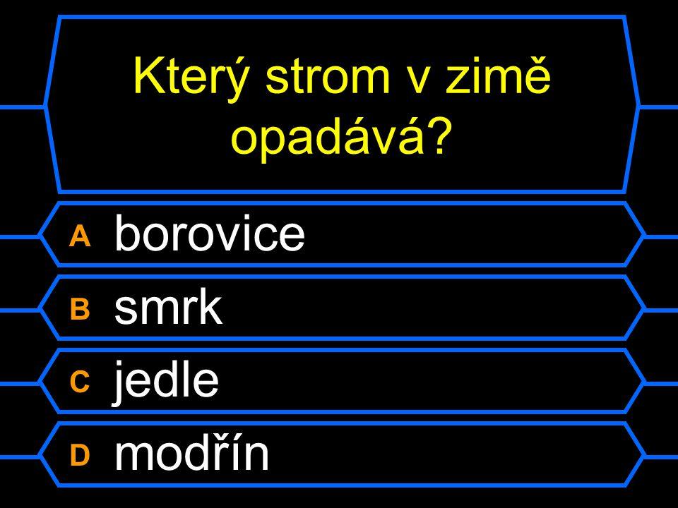 Otázka 6