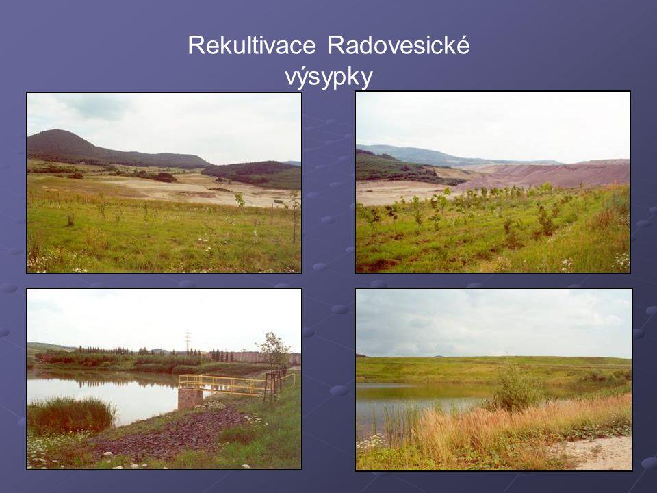 Hydrická rekultivace jámy Medard-Libík