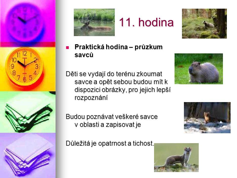11. hodina Praktická hodina – průzkum savců Praktická hodina – průzkum savců Děti se vydají do terénu zkoumat savce a opět sebou budou mít k dispozici