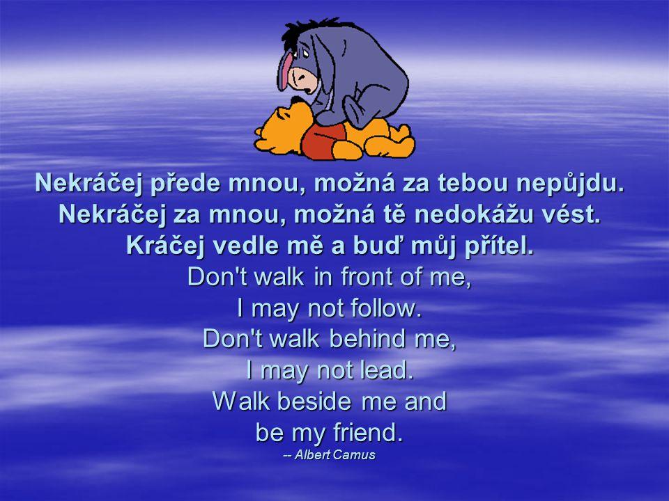 Opravdový přítel je ten, který k nám vstupuje do dveří právě ve chvíli, kdy z nich zbytek světa odchází. A real friend is one who walks in when the re