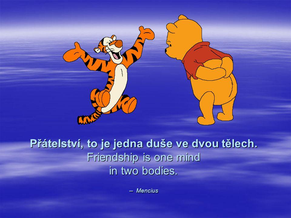 Přátelství, to je jedna duše ve dvou tělech. Friendship is one mind in two bodies. -- Mencius