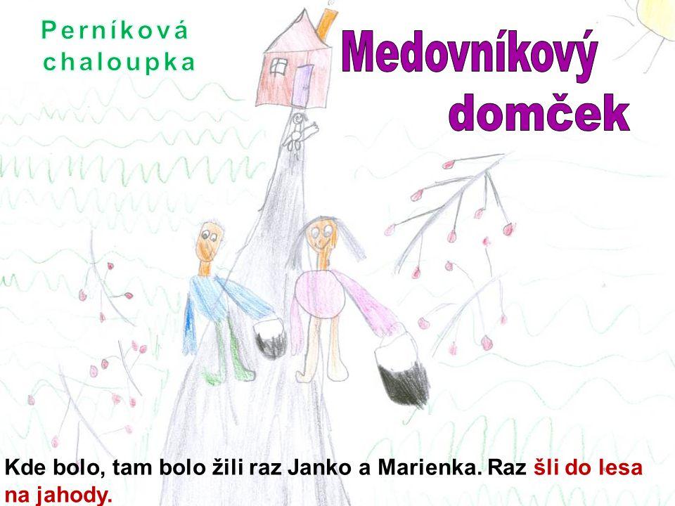Kde bolo, tam bolo žili raz Janko a Marienka. Raz šli do lesa na jahody.