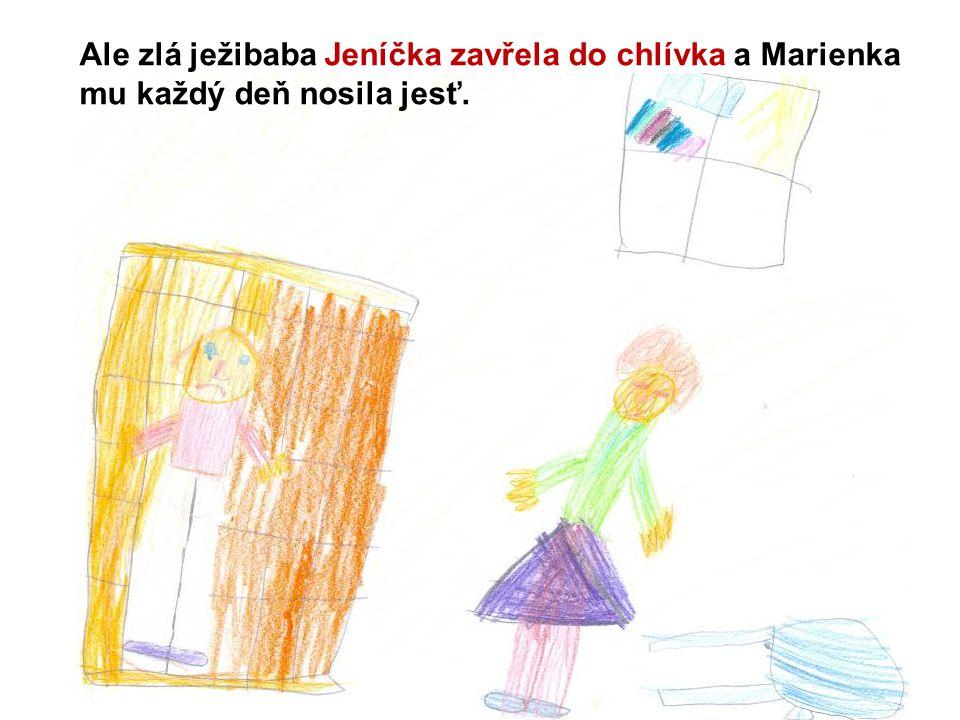 Ale zlá ježibaba Jeníčka zavřela do chlívka a Marienka mu každý deň nosila jesť.