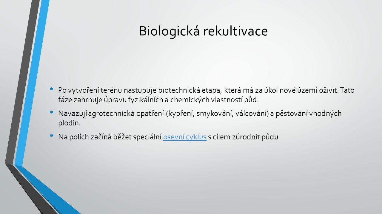 Biologická rekultivace Po vytvoření terénu nastupuje biotechnická etapa, která má za úkol nové území oživit.