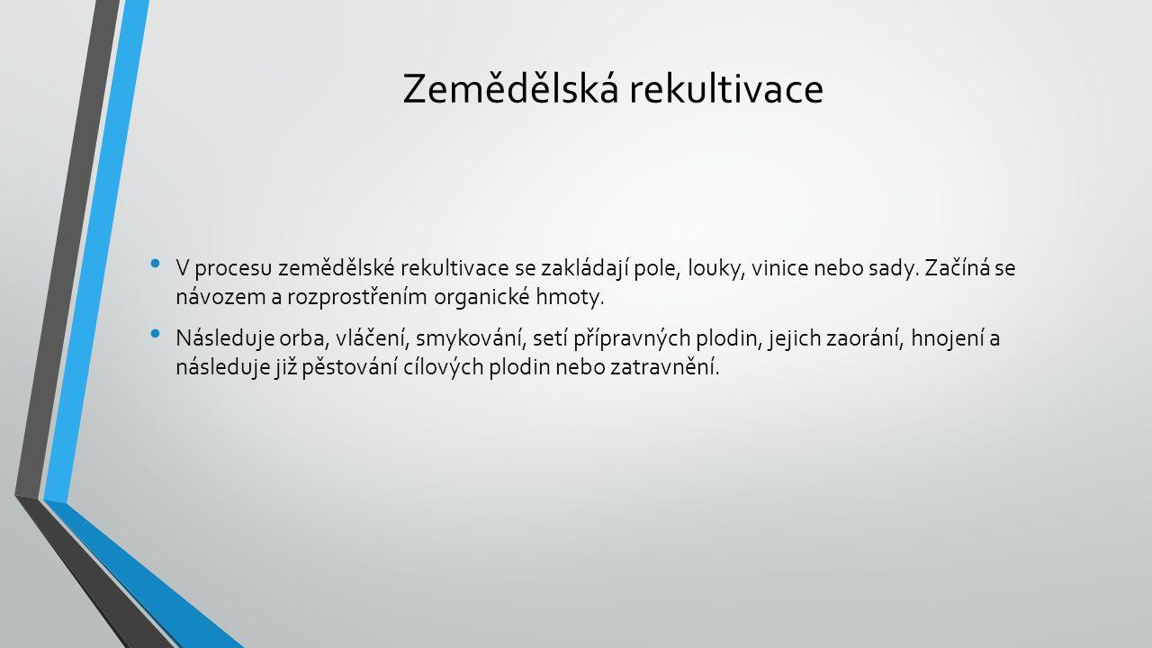 Zemědělská rekultivace V procesu zemědělské rekultivace se zakládají pole, louky, vinice nebo sady.