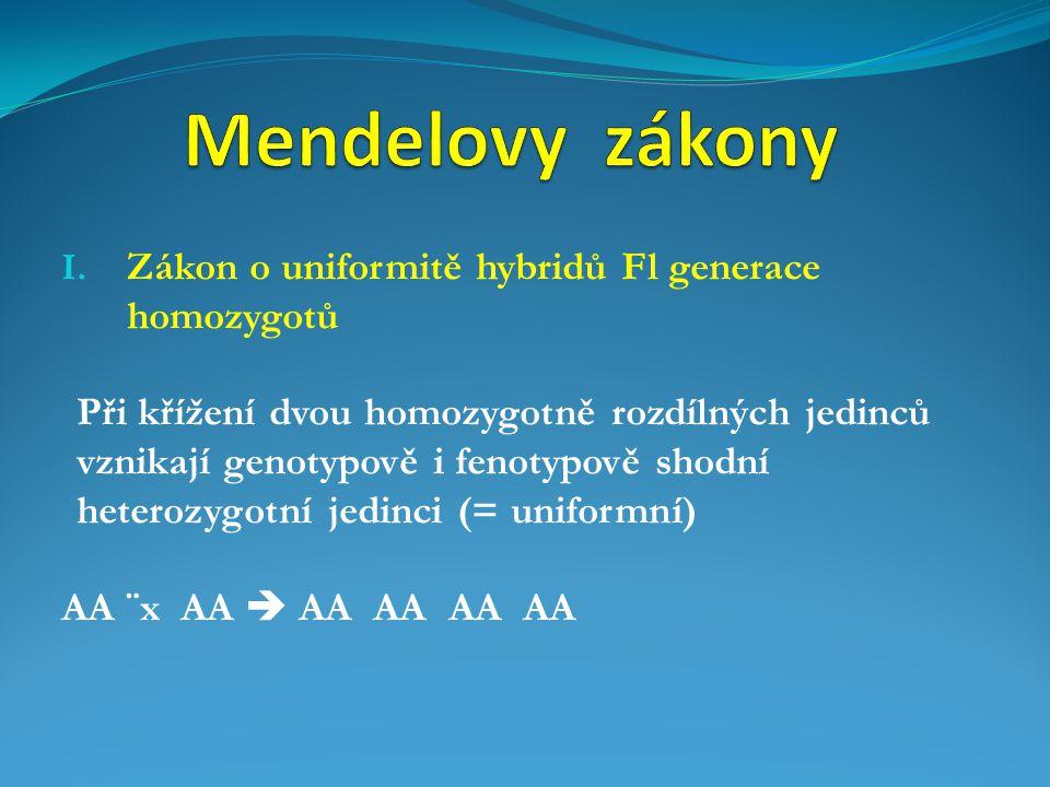 I. Zákon o uniformitě hybridů Fl generace homozygotů Při křížení dvou homozygotně rozdílných jedinců vznikají genotypově i fenotypově shodní heterozyg