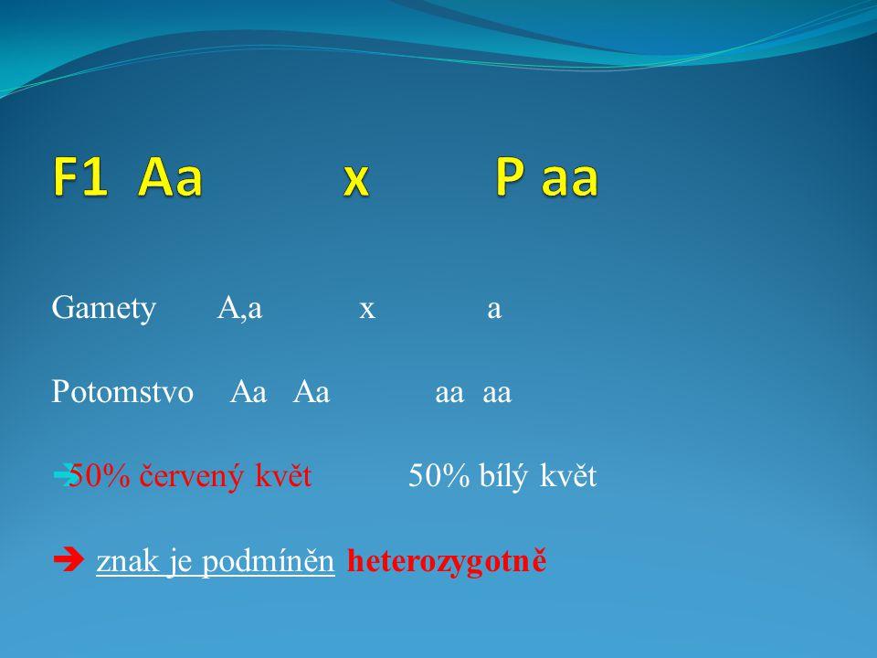 Gamety A,a x a Potomstvo Aa Aa aa aa  50% červený květ 50% bílý květ  znak je podmíněn heterozygotně