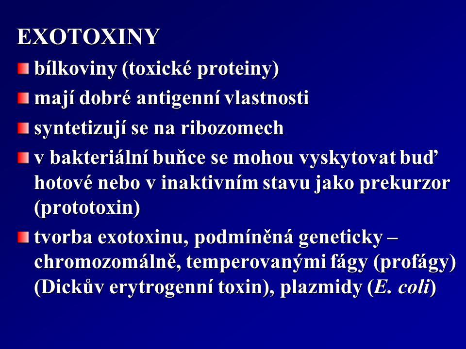 EXOTOXINY bílkoviny (toxické proteiny) mají dobré antigenní vlastnosti syntetizují se na ribozomech v bakteriální buňce se mohou vyskytovat buď hotové
