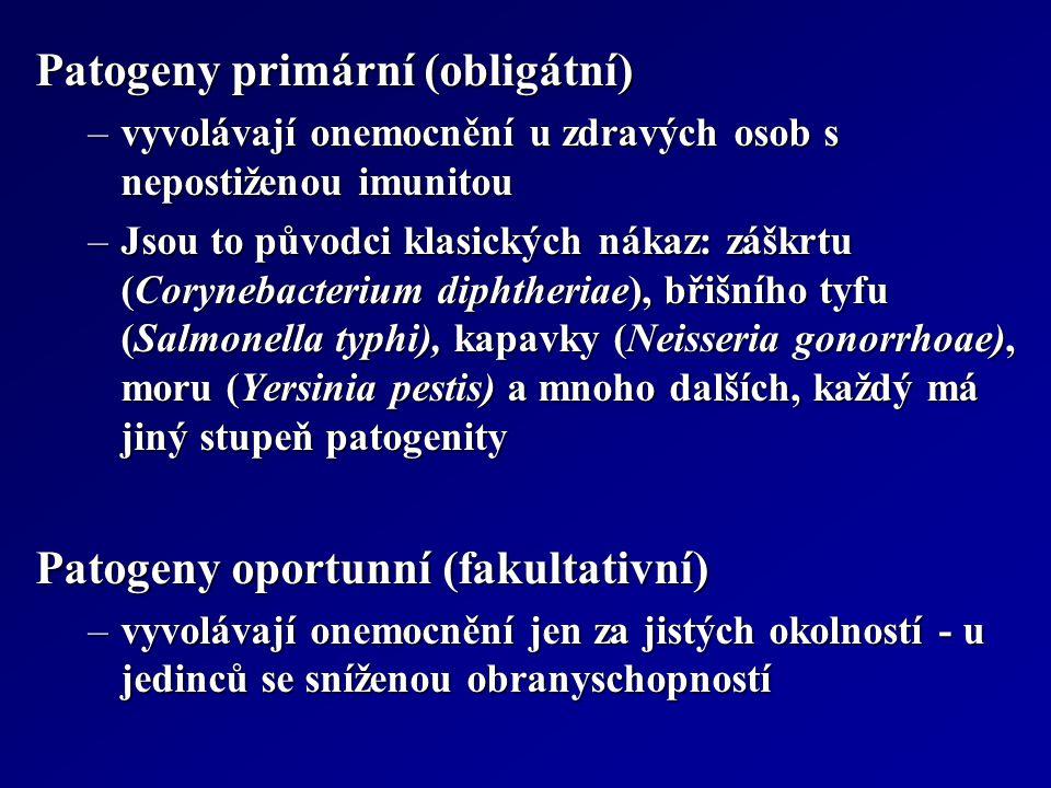 Patogeny primární (obligátní) –vyvolávají onemocnění u zdravých osob s nepostiženou imunitou –Jsou to původci klasických nákaz: záškrtu (Corynebacteri