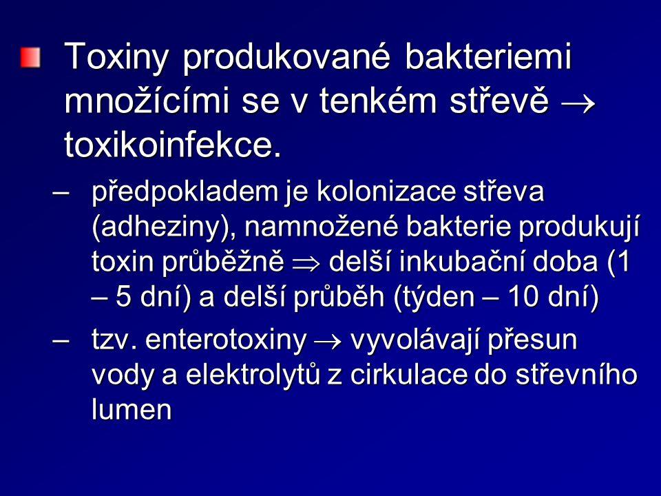 Toxiny produkované bakteriemi množícími se v tenkém střevě  toxikoinfekce. –předpokladem je kolonizace střeva (adheziny), namnožené bakterie produkuj