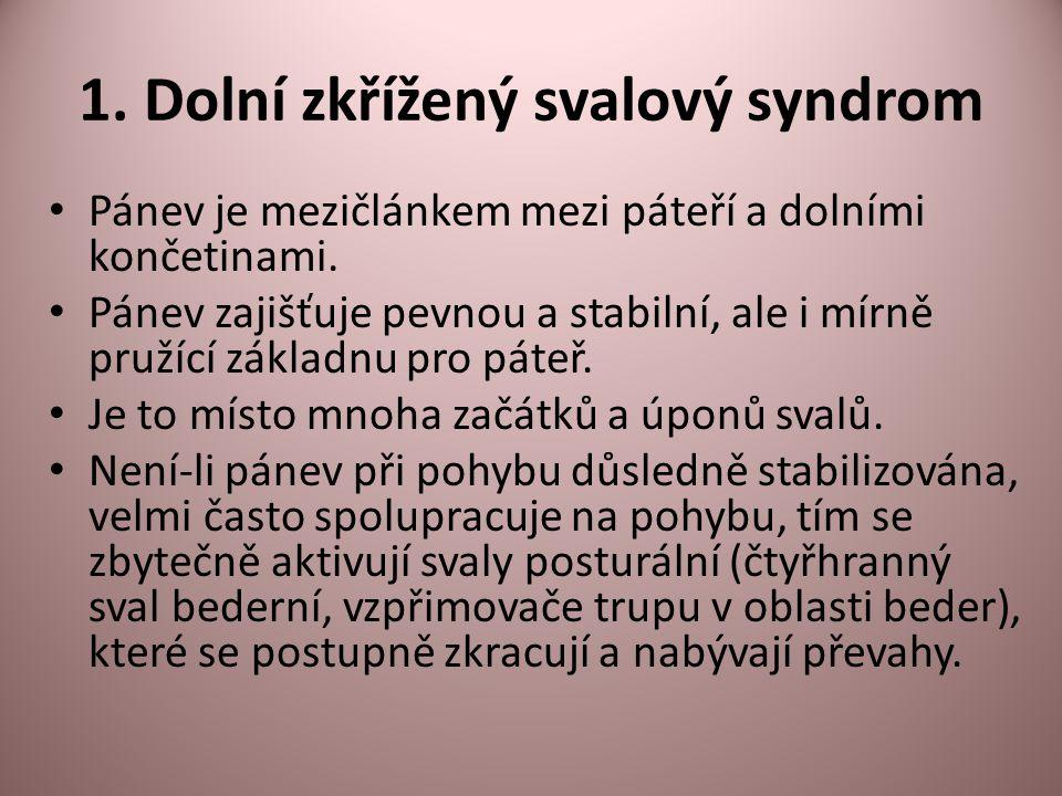 1. Dolní zkřížený svalový syndrom Pánev je mezičlánkem mezi páteří a dolními končetinami. Pánev zajišťuje pevnou a stabilní, ale i mírně pružící zákla