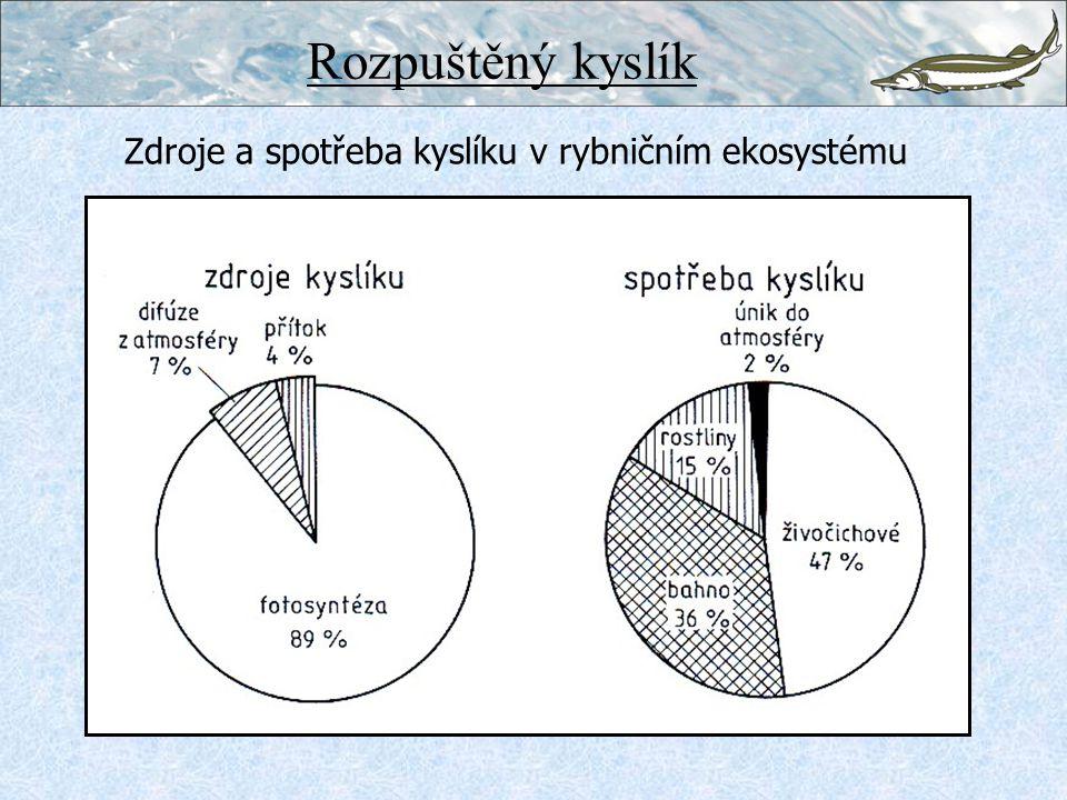Zdroje a spotřeba kyslíku v rybničním ekosystému Rozpuštěný kyslík