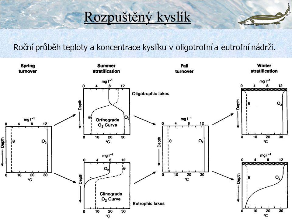 Roční průběh teploty a koncentrace kyslíku v oligotrofní a eutrofní nádrži. Rozpuštěný kyslík