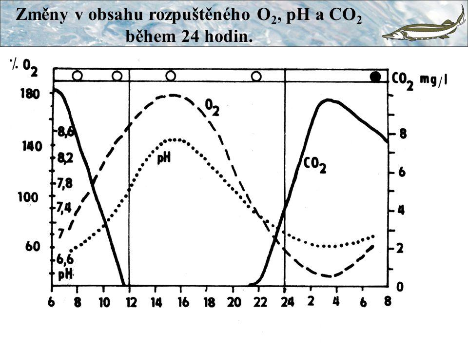 Změny v obsahu rozpuštěného O 2, pH a CO 2 během 24 hodin.