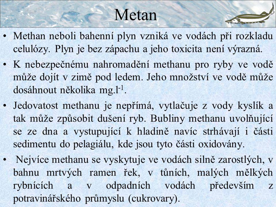 Metan Methan neboli bahenní plyn vzniká ve vodách při rozkladu celulózy. Plyn je bez zápachu a jeho toxicita není výrazná. K nebezpečnému nahromadění