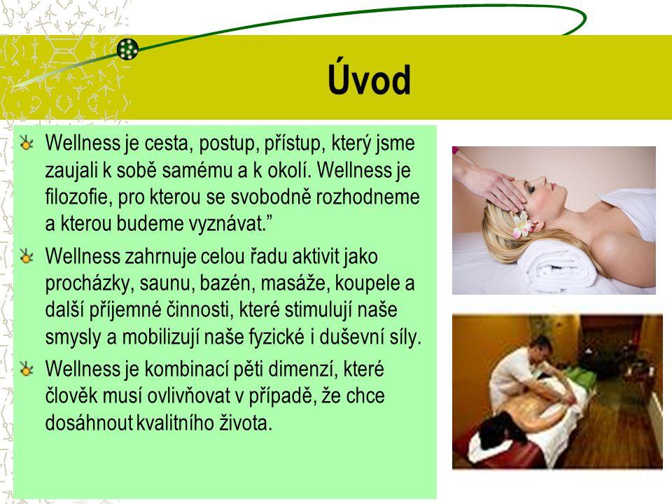 Rozdíl mezi lázeňským, wellness a fitness provozem V moderním pojetí je wellness kombinací relaxačních a některých léčebných metod a obráceně lázně nabízejí kromě léčby i některé prvky wellness.
