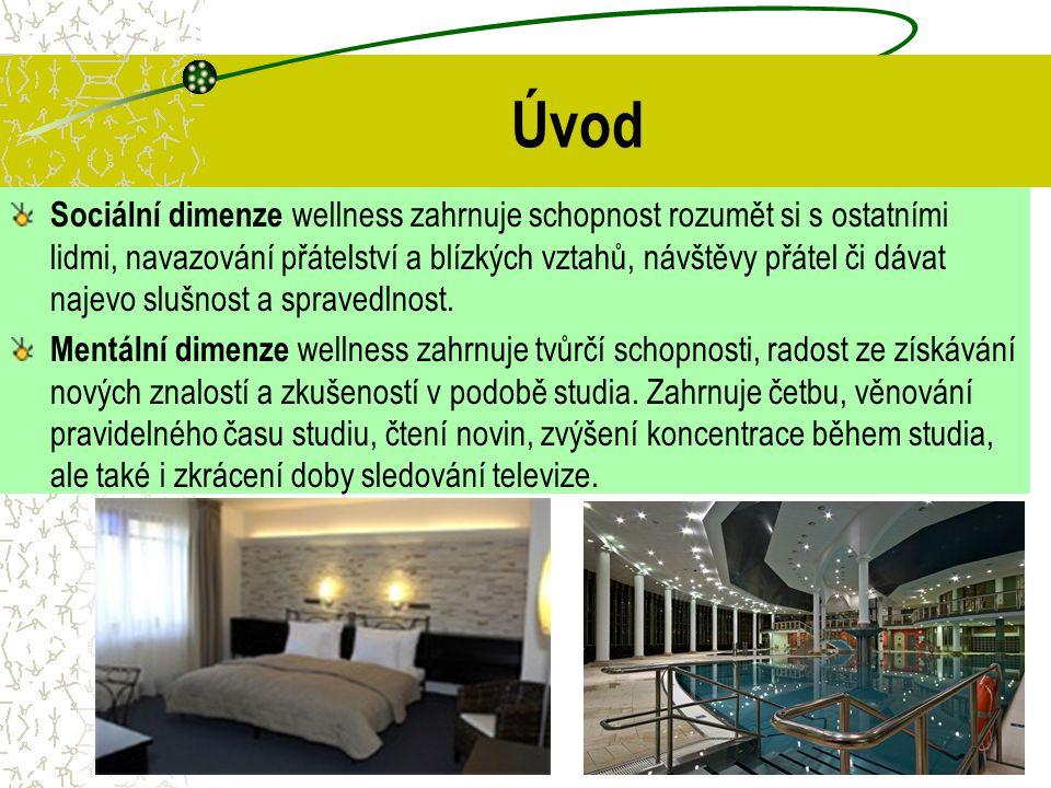 Dotazníkové šetření v hotelových wellness U hotelů v Olomouckém kraji je to dokonce 50 a 94 % respondentů, kteří při cestách vyhledávají hotely se službami wellness.