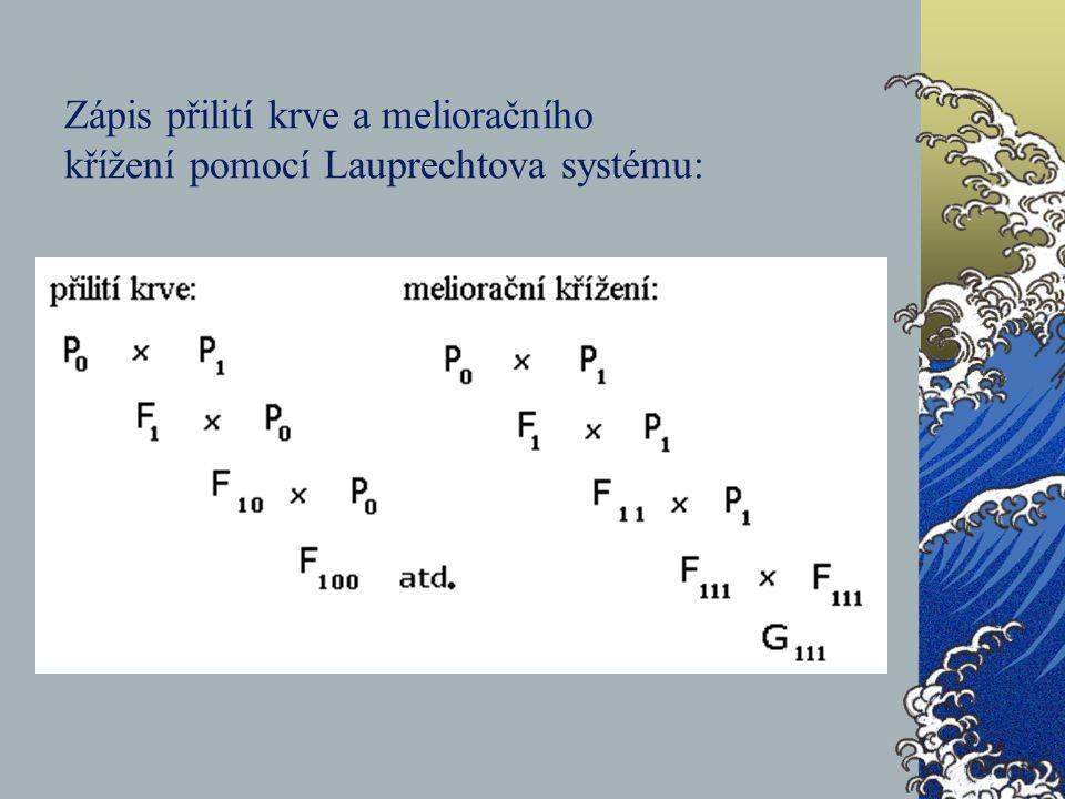 Zápis přilití krve a melioračního křížení pomocí Lauprechtova systému: