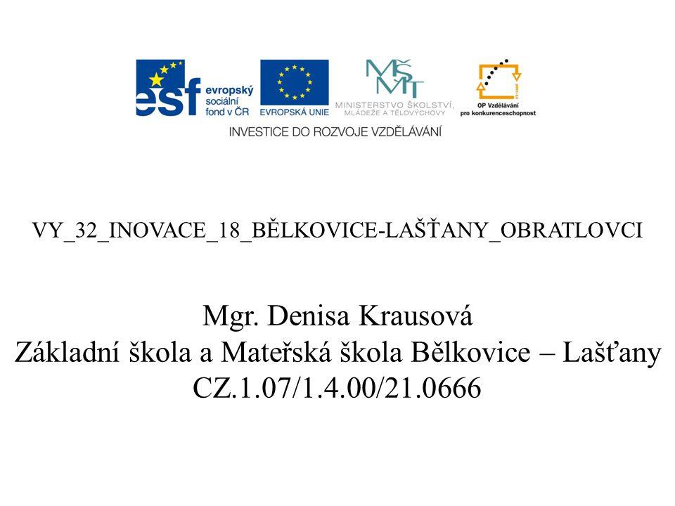VY_32_INOVACE_18_BĚLKOVICE-LAŠŤANY_OBRATLOVCI Mgr.