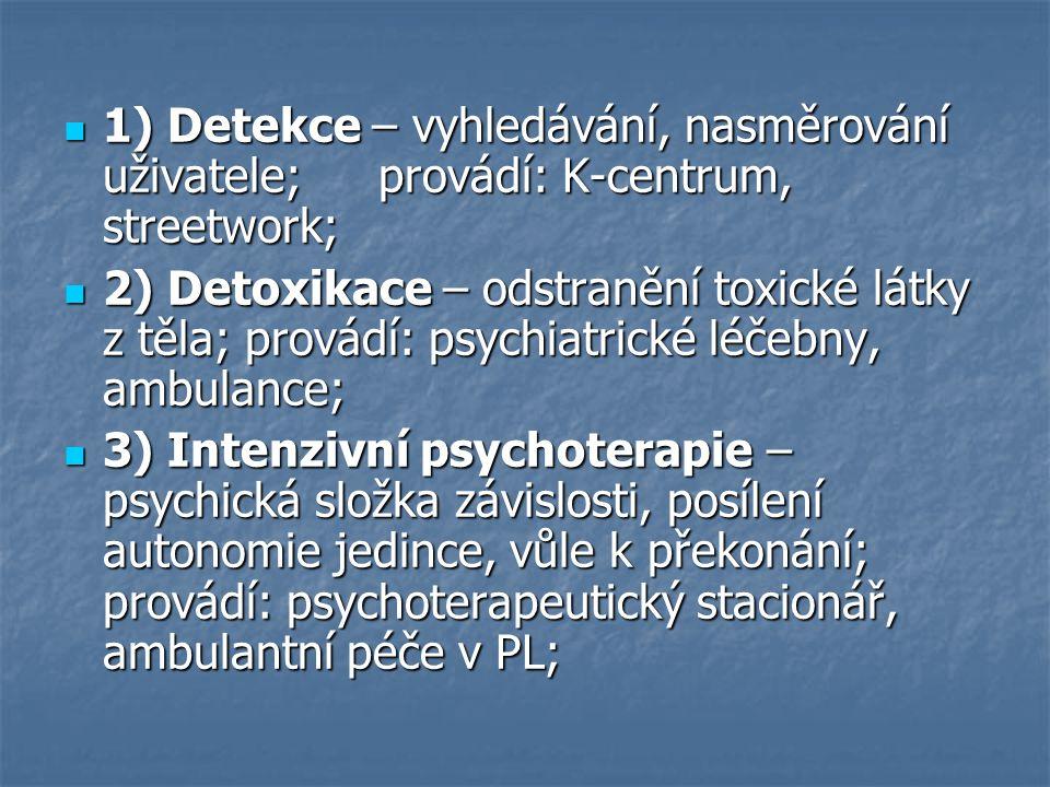 1) Detekce – vyhledávání, nasměrování uživatele;provádí: K-centrum, streetwork; 1) Detekce – vyhledávání, nasměrování uživatele;provádí: K-centrum, streetwork; 2) Detoxikace – odstranění toxické látky z těla; provádí: psychiatrické léčebny, ambulance; 2) Detoxikace – odstranění toxické látky z těla; provádí: psychiatrické léčebny, ambulance; 3) Intenzivní psychoterapie – psychická složka závislosti, posílení autonomie jedince, vůle k překonání; provádí: psychoterapeutický stacionář, ambulantní péče v PL; 3) Intenzivní psychoterapie – psychická složka závislosti, posílení autonomie jedince, vůle k překonání; provádí: psychoterapeutický stacionář, ambulantní péče v PL;