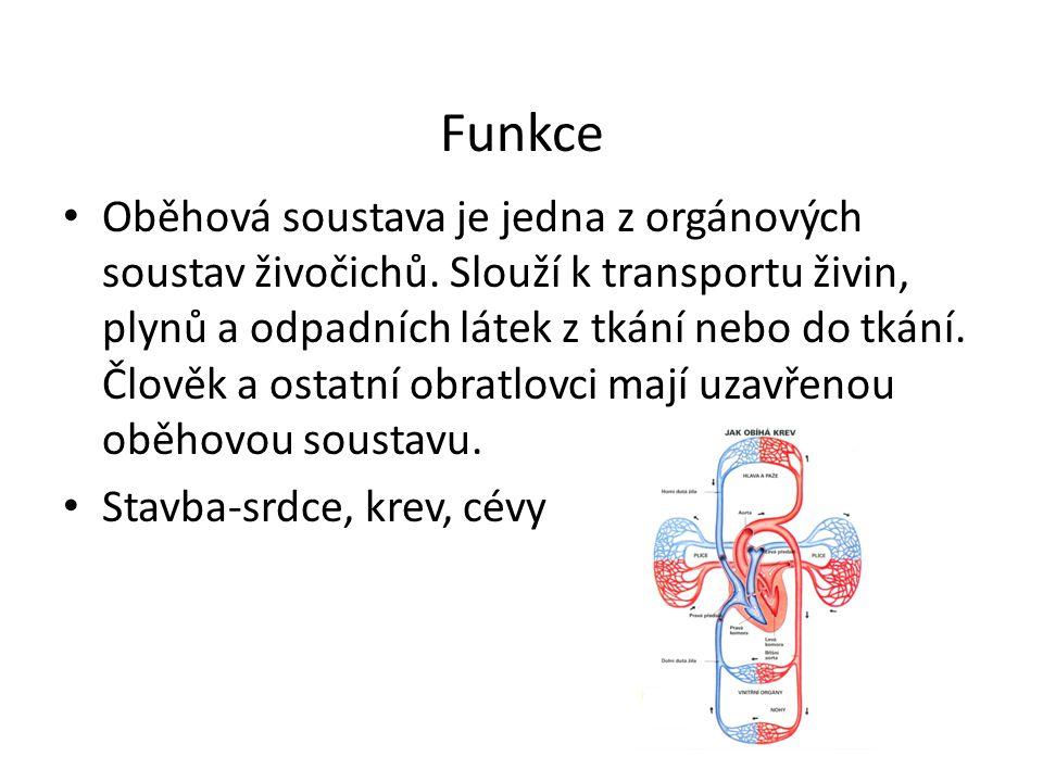 Funkce Oběhová soustava je jedna z orgánových soustav živočichů. Slouží k transportu živin, plynů a odpadních látek z tkání nebo do tkání. Člověk a os