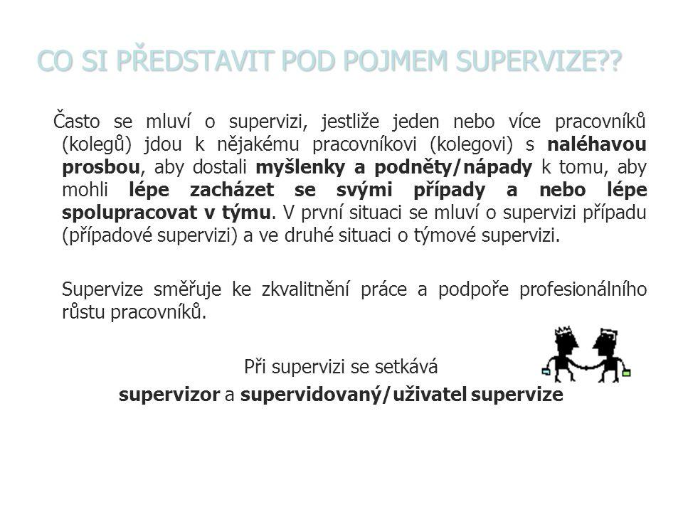 SUPERVIZE Supervize = super vize Super = suprový, perfektní, výborný Vize = způsob výhledu, přibližuje mnohotvárnost myšlenek.